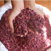 Organic Rose Petals- Blend It Raw Apothecary